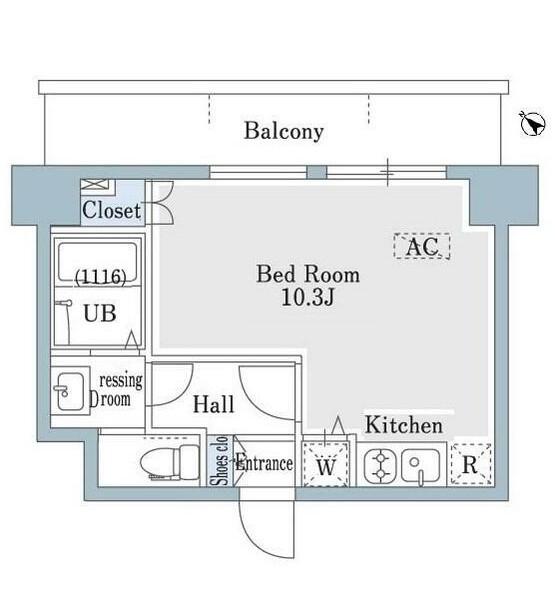 SHOWN HATSUDAI502号室